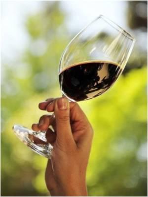Wine pic