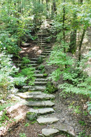 Stone_steps_in_the_woods