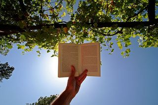 Reading_in_the_sun