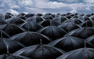 Black-umbrellas-wallpapers